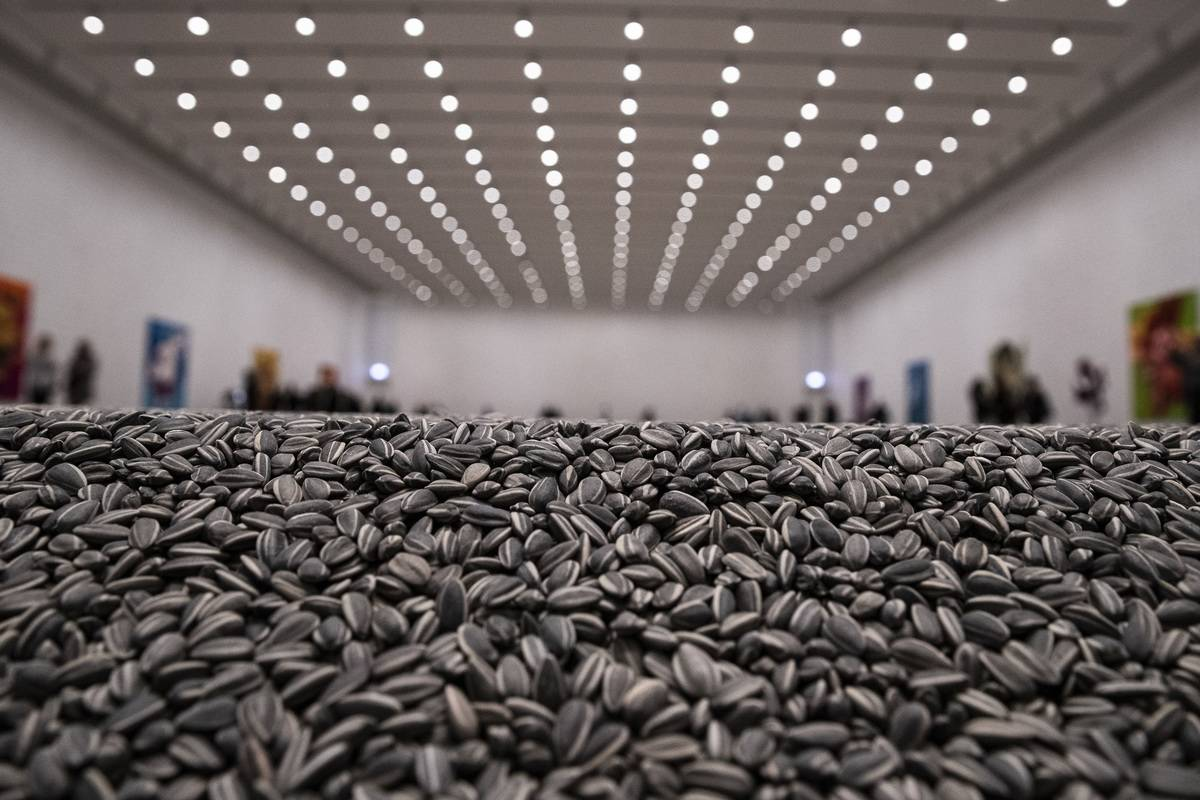 An Entire Museum Exhibit On Comfort Seeds